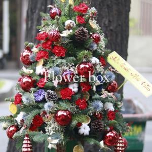 Cây Thông Giáng Sinh - FBEV 012
