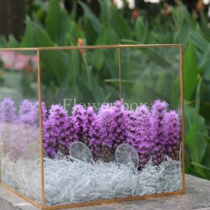 Hộp kính hoa - FBTB 023