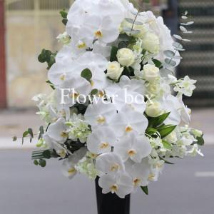 Bình hoa chúc mừng - FBVA 013