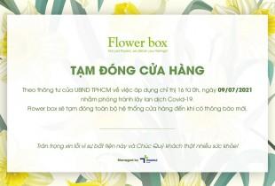 FLOWER BOX TẠM ĐÓNG CỬA HÀNG PHÒNG CHỐNG COVID-19