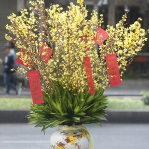 Bình Hoa Tết - FBVA 090