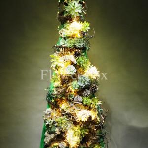 Cây Thông Giáng Sinh - FBEV 002