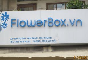 ĐƠN VỊ SỬ DỤNG TRÁI PHÉP NHÃN HIỆU FLOWER BOX BỊ XỬ LÝ.