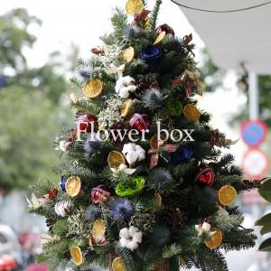Cây Thông Giáng Sinh - FBEV 008