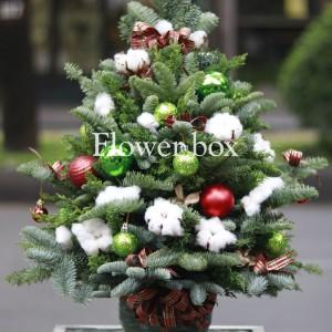 Cây Thông Giáng Sinh - FBEV 015