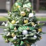 Cây Thông Giáng Sinh - FBEV 016