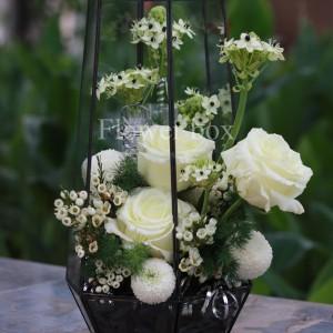 Hộp kính hoa - FBTB 047