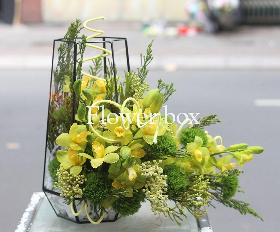 Hộp kính hoa - FBTB 059