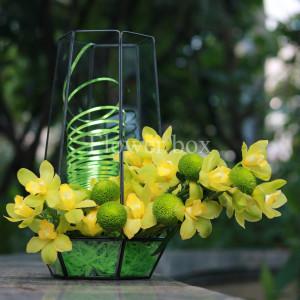 Hộp kính hoa - FBTB 039