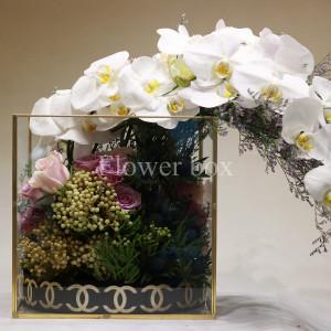 Hộp kính hoa - FBTB 031